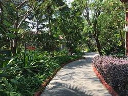 Walk ways to rooms