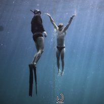 We Freedive