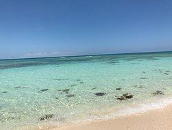 Bajari Beach