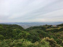 Mt. Shigi