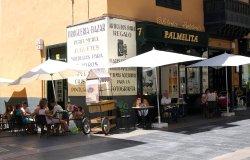 imagen Palmelita en Santa Cruz de Tenerife