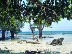 Pantai pasir Putih Lhok Me