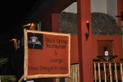 Black Orchid Restaurant