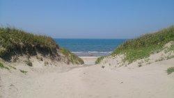 吹上浜海岸砂丘