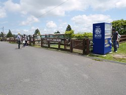 Guernsey Farm