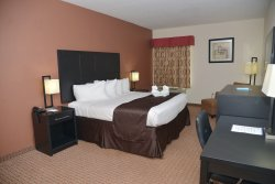 Best Western Mulberry Hotel