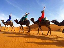 Bab Africa Travel