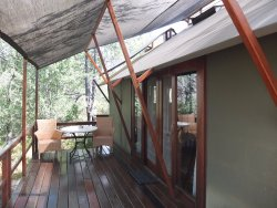Tent Rooms at Mushara Outpost