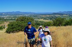 Get active on a Hike & Wine or Beer Tour! We'll take you on breath-taking trails.