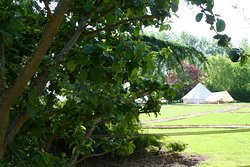 At one with nature, Suffolk Glamping with fire pit, hot tub and sauna.