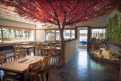 Restaurant Shilla