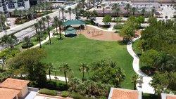 Town Center Park