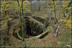 Divaška jama