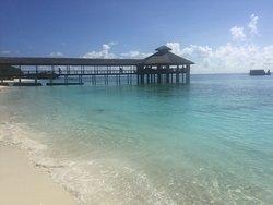 Beautiful paradise