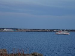 Playa Cala ,n Forcat