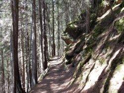 Sentiero della Meditazione alla Cappella e Sentiero delle Fiabe