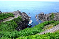 Tojinbo Tour Boat