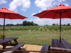 Lazy Elm Winery