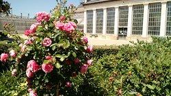 Beau jardin, super parc : pour les petits et les grands