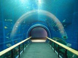 พิพิธภัณฑ์ทะเลสาบบิวะ