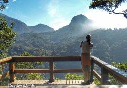 Mirante da Cascatinha, na Floresta da Tijuca