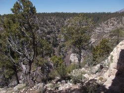 Walnut Canyon Drive