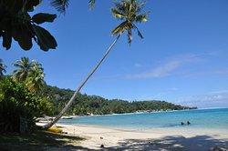 Matira beach (258535602)
