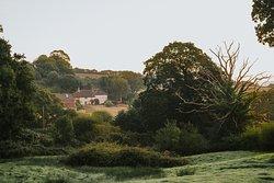 Hogchester