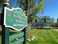 Wellington Willows Boutique B&B