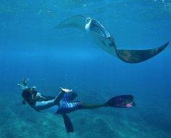 Lembongan Water Sport