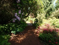 The Glades, 561 172 St, Surrey, BC V3S 9P8
