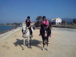Angel's Horses