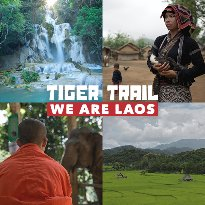 Tiger Trail Travel