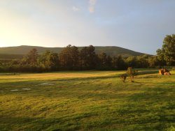 Wolf Ridge Country Club