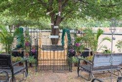Wedding venue (outdoor)