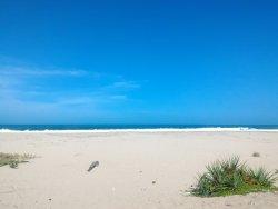Pangumbahan Turtle Beach Coastal Park