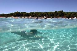 Zadar Day Trips