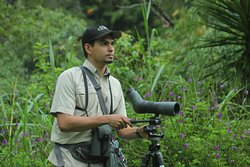 Johan Chaves - Nature and birding Tours