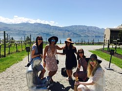Bare Wine Tours