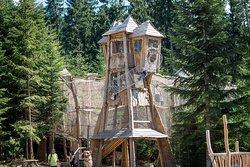 Kralovstvi lesa Lipno