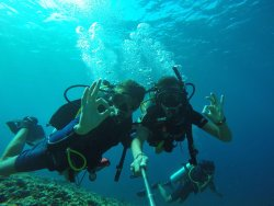 Dpm Diving Gili