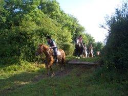 Banner Equestrian Centre