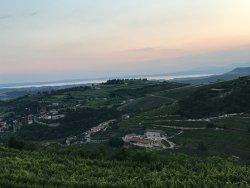 Unforgettable Visit to Valpolicella