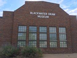 Blackwater Draw Museum