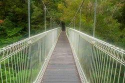 Corrigan's Suspension Bridge