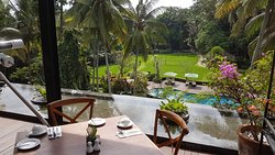 A HiddenTreasure in Ubud