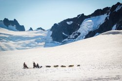 Alaska Icefield Expeditions