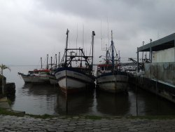 Porto de Cananéia