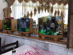 Baradaran Restaurant