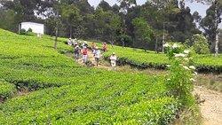 Sri Lanka Trekking Club